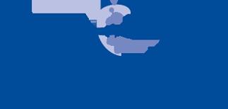AviPlus® P Logo