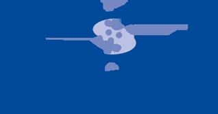 AviPlus® S Logo