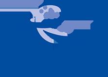 Timet® Logo